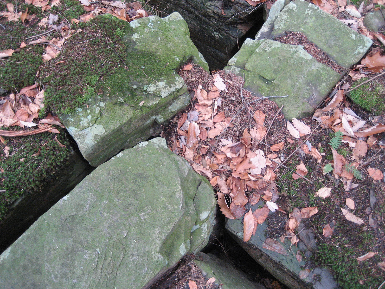 Site Geology Fractured Bluestone