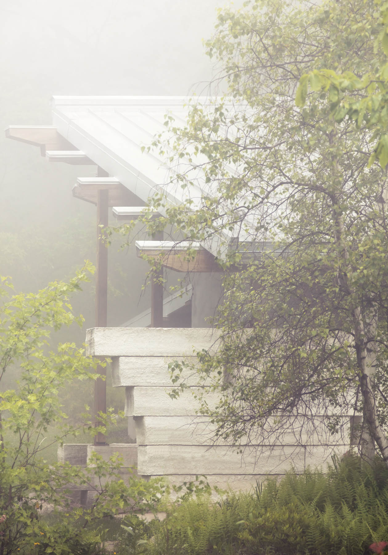 Timber and Gunkcrete Framing - Morning Fog